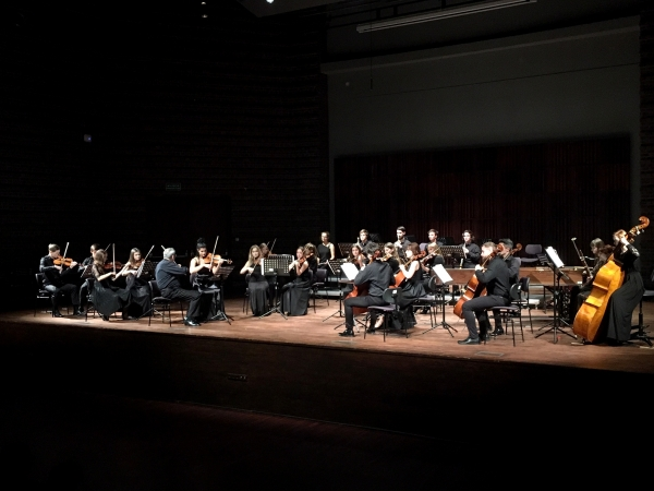 The Academic Chamber Orchestra